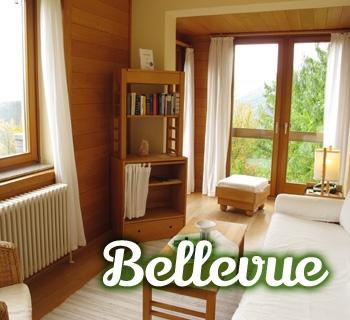 z-bellevue-01_350x320
