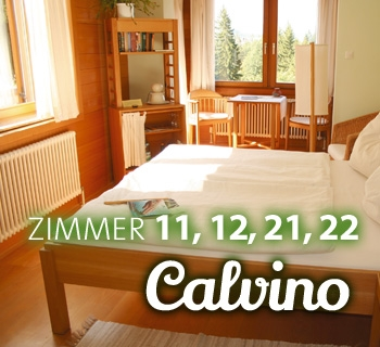 z-calvino-02_350x320