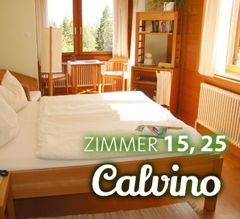 z-calvino-03_350x320
