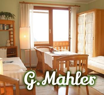 z-gmahler-01_350x320