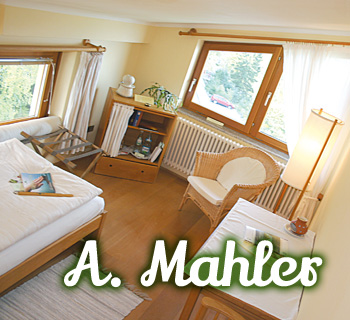z-amahler-01_350x320