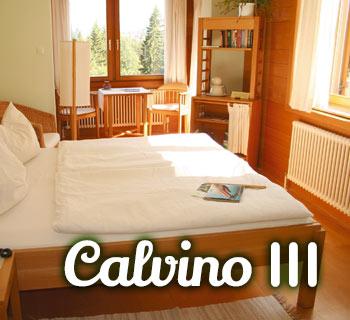 Calvino Zimmertyp 3, Panoramahotel Wagner
